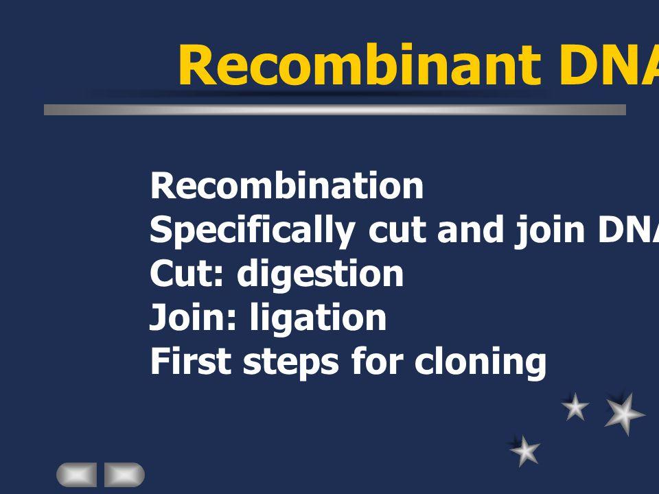 Ligation Intramolecular ligation (re)circularization