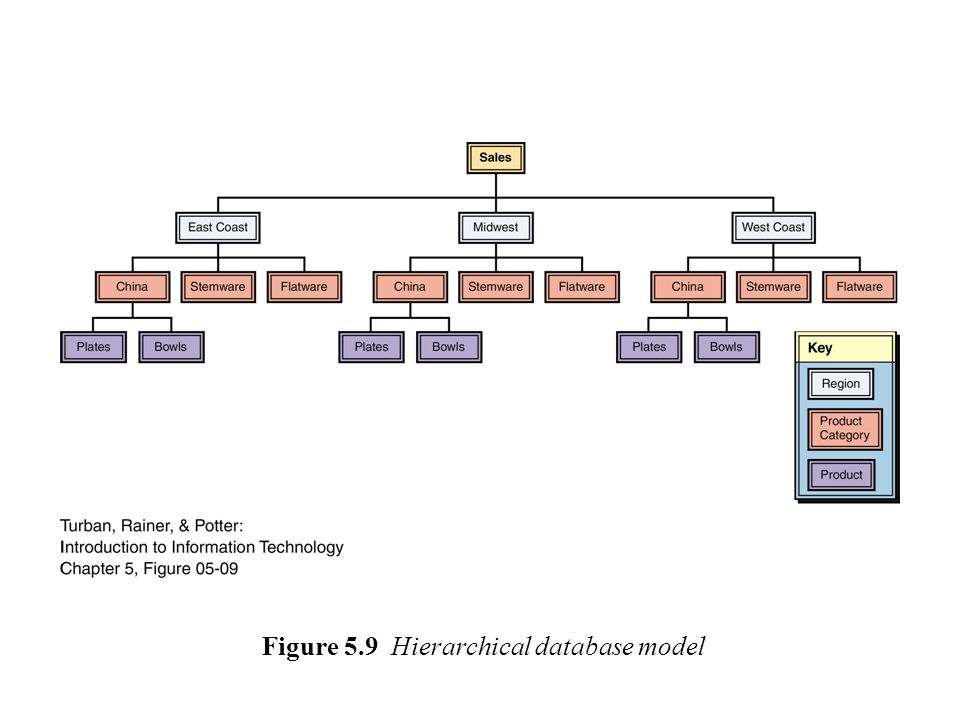 Figure 5.9 Hierarchical database model