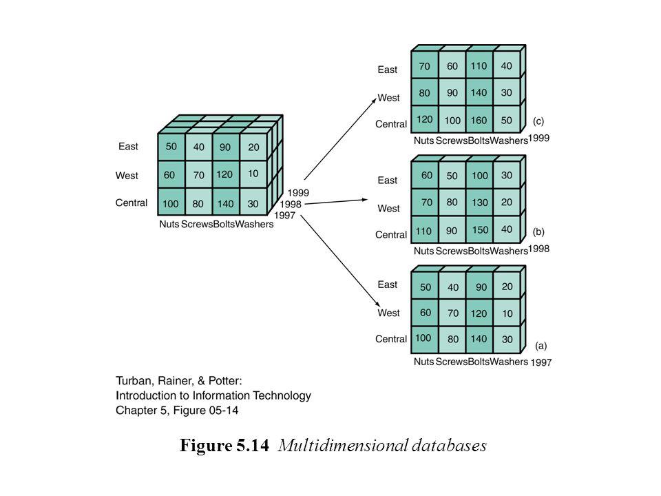 Figure 5.14 Multidimensional databases