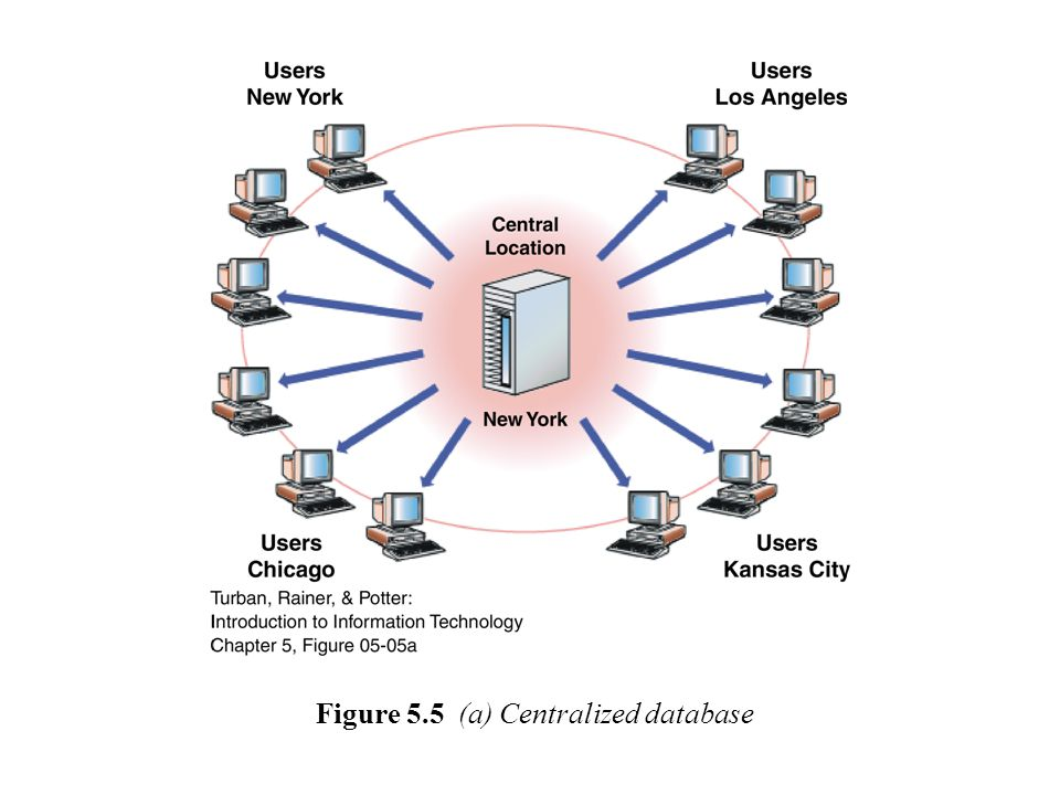 Figure 5.5 (b) Distributed database with complete or partial copies of the central database in more than one location.