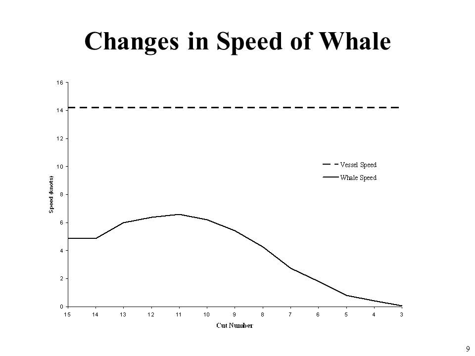 Changes in Speed of Whale 9