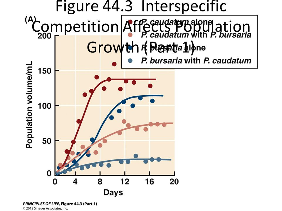 Figure 44.3 Interspecific Competition Affects Population Growth (Part 1)