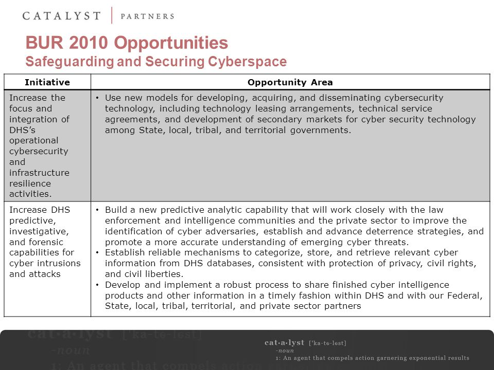 BUR 2010 Opportunities Safeguarding and Securing Cyberspace InitiativeOpportunity Area Increase the focus and integration of DHS's operational cyberse
