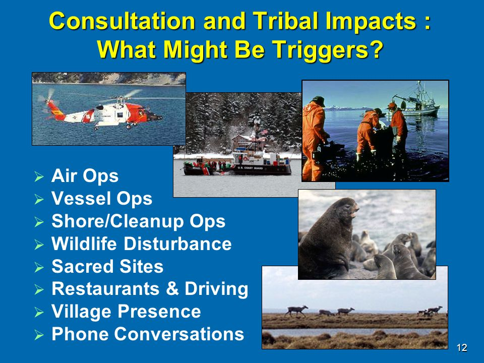Consultation and Tribal Impacts : What Might Be Triggers?  Air Ops  Vessel Ops  Shore/Cleanup Ops  Wildlife Disturbance  Sacred Sites  Restauran