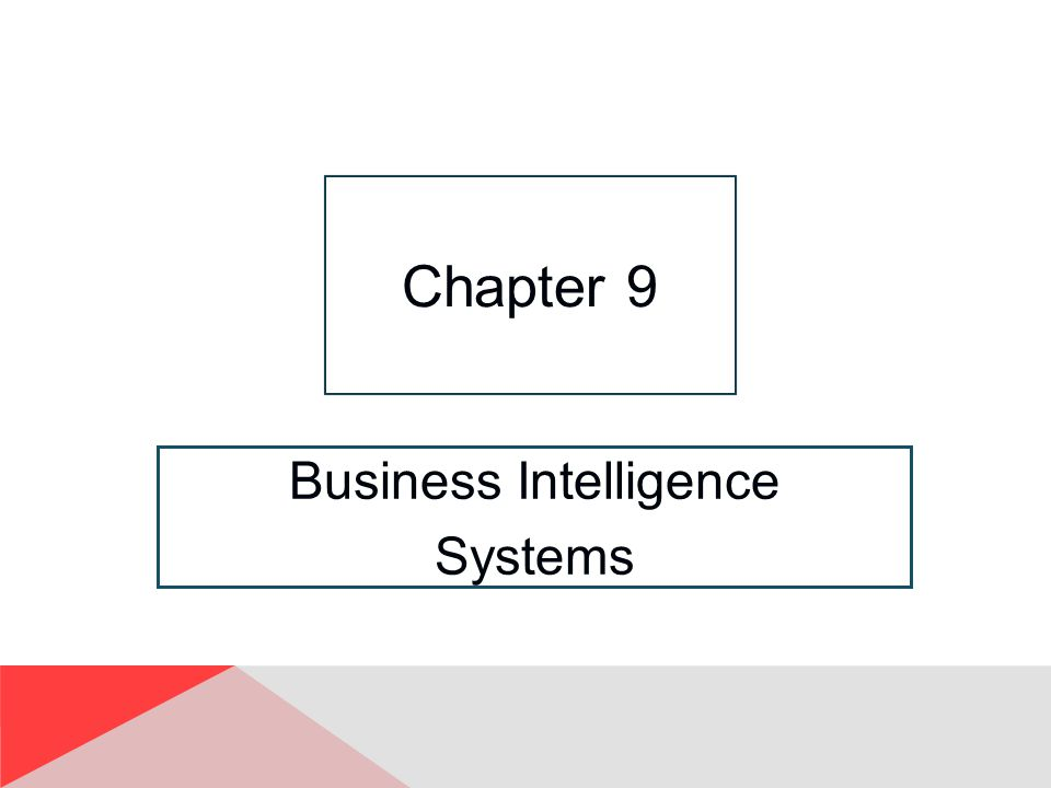 Business Intelligence Systems Chapter 9