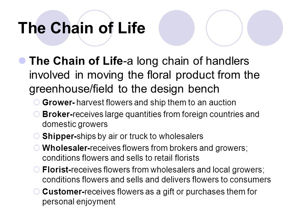 The Chain of Life The Chain of Life-a long chain of handlers involved in moving the floral product from the greenhouse/field to the design bench  Grower- harvest flowers and ship them to an auction  Broker-receives large quantities from foreign countries and domestic growers  Shipper-ships by air or truck to wholesalers  Wholesaler-receives flowers from brokers and growers; conditions flowers and sells to retail florists  Florist-receives flowers from wholesalers and local growers; conditions flowers and sells and delivers flowers to consumers  Customer-receives flowers as a gift or purchases them for personal enjoyment