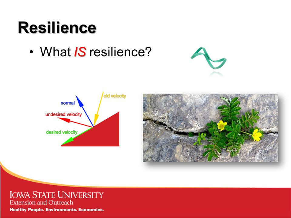 Resilience ISWhat IS resilience