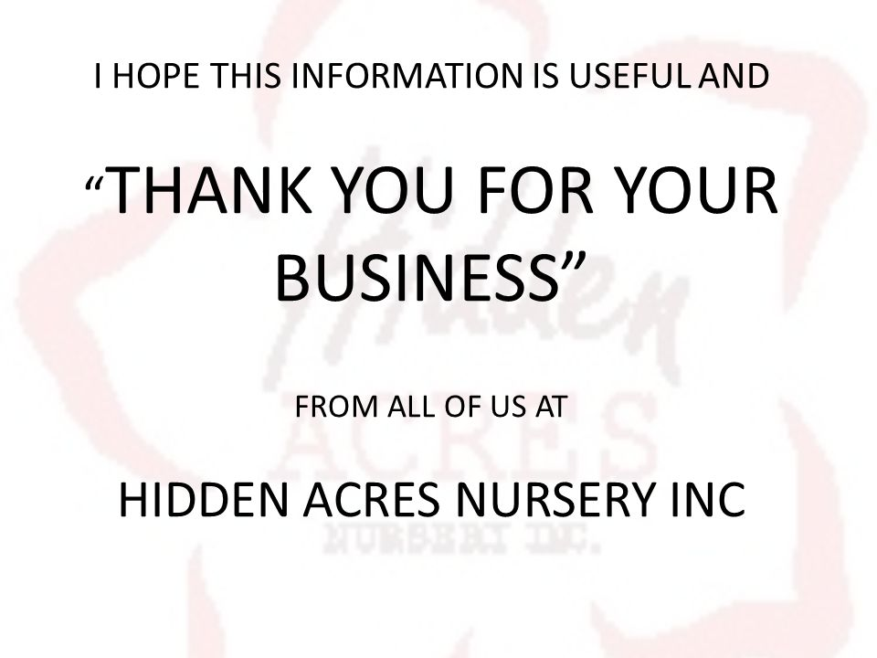 I HOPE THIS INFORMATION IS USEFUL AND THANK YOU FOR YOUR BUSINESS FROM ALL OF US AT HIDDEN ACRES NURSERY INC