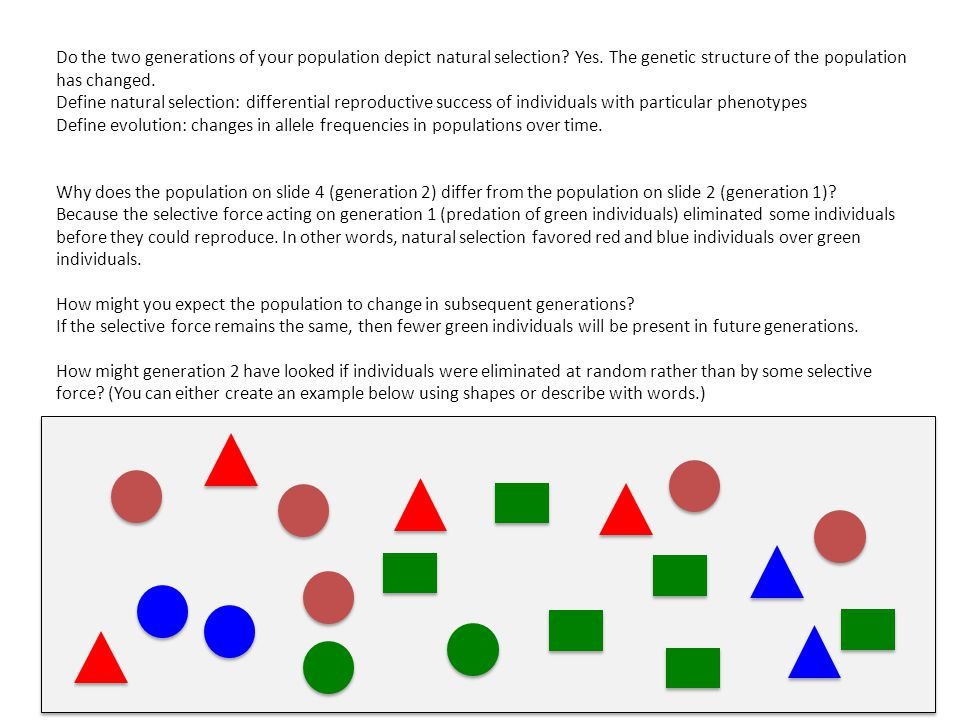 Do the two generations of your population depict natural selection.