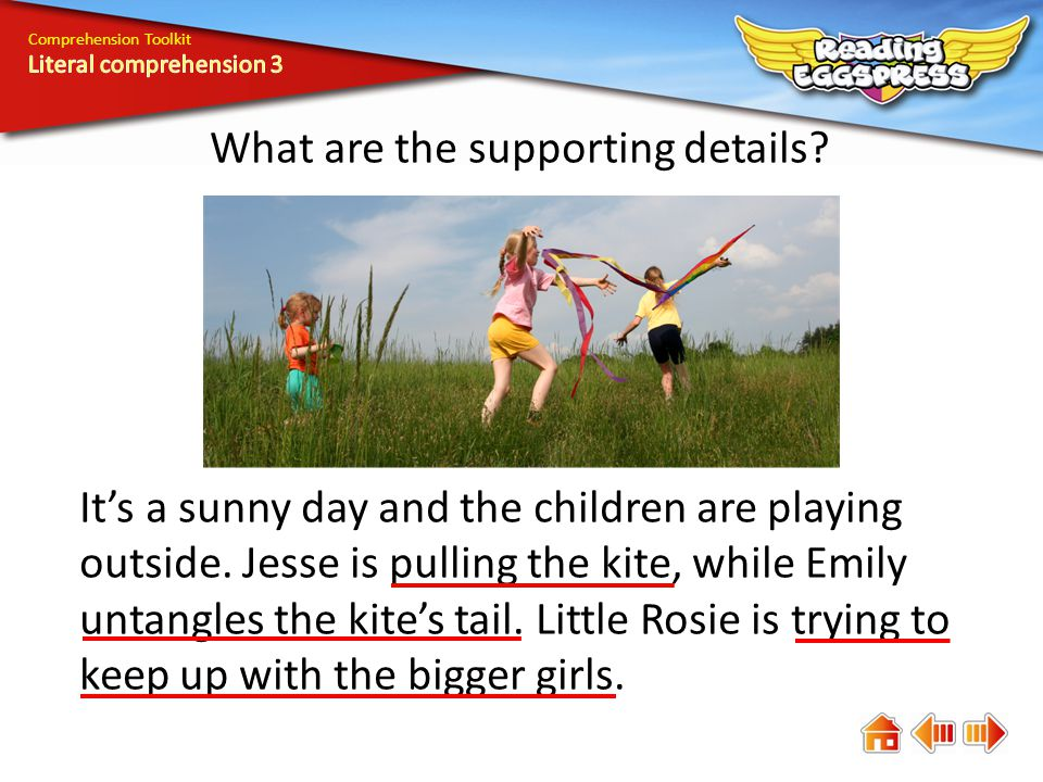 Comprehension Toolkit What are the supporting details.