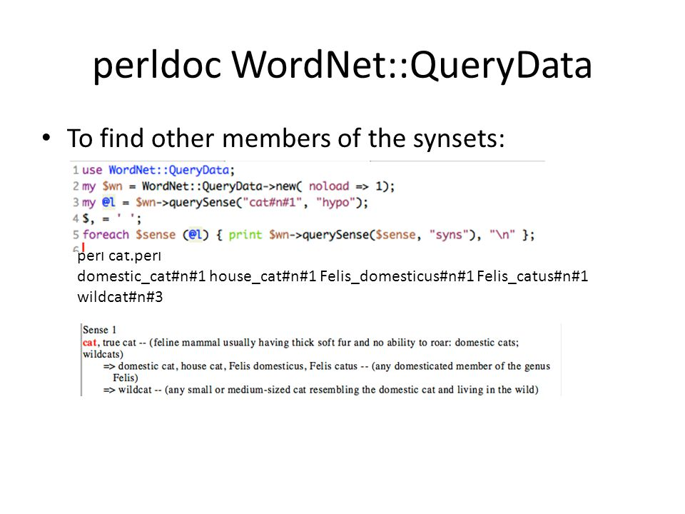 perldoc WordNet::QueryData To find other members of the synsets: perl cat.perl domestic_cat#n#1 house_cat#n#1 Felis_domesticus#n#1 Felis_catus#n#1 wildcat#n#3