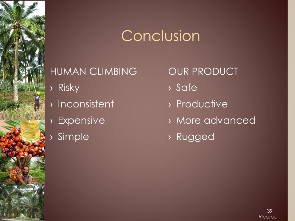 ›Safe ›Productive ›More advanced ›Rugged OUR PRODUCT ›Risky ›Inconsistent ›Expensive ›Simple HUMAN CLIMBING Conclusion 39 Ricardo