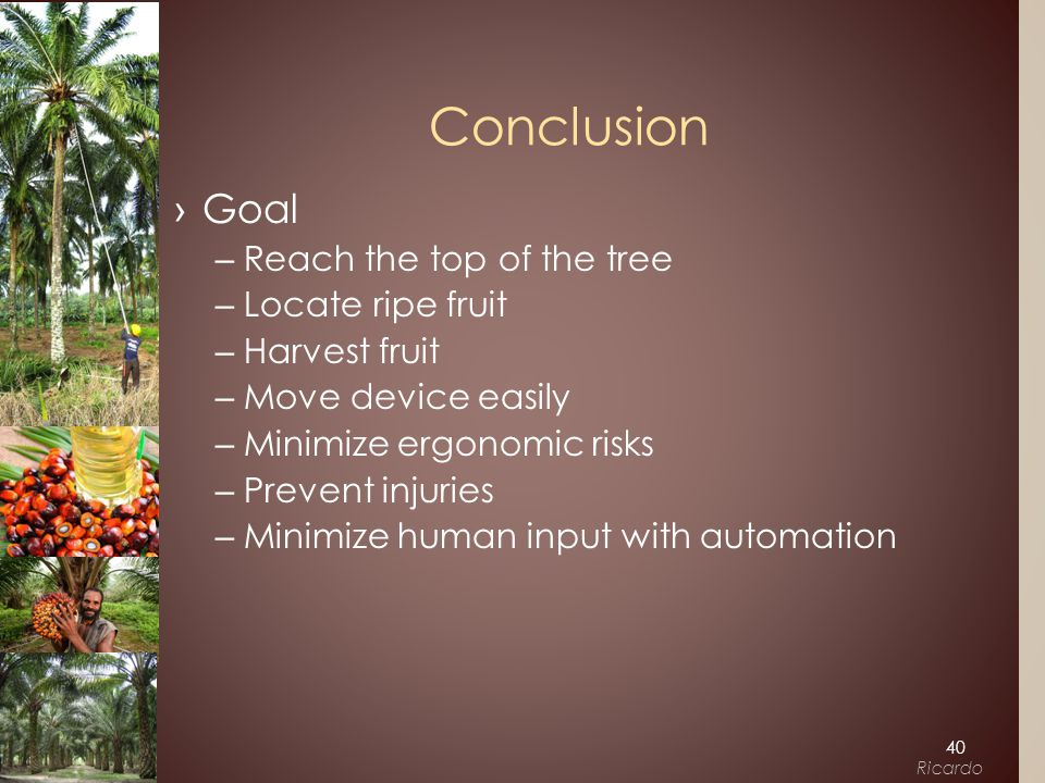›Goal –Reach the top of the tree –Locate ripe fruit –Harvest fruit –Move device easily –Minimize ergonomic risks –Prevent injuries –Minimize human input with automation Conclusion 40 Ricardo