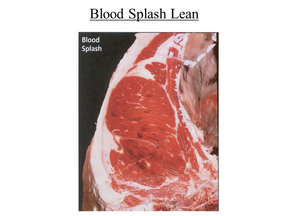 Blood Splash Lean