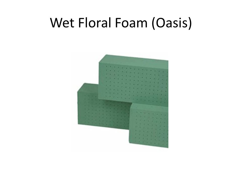 Wet Floral Foam (Oasis)