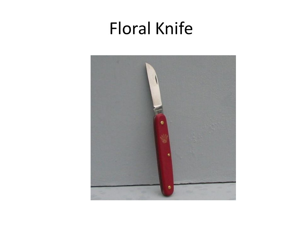 Floral Knife