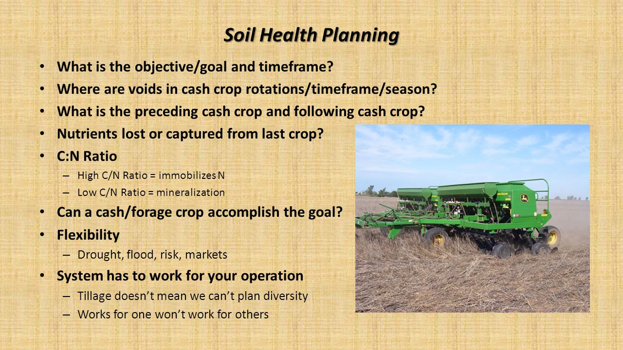 What is the objective/goal and timeframe? Where are voids in cash crop rotations/timeframe/season? What is the preceding cash crop and following cash
