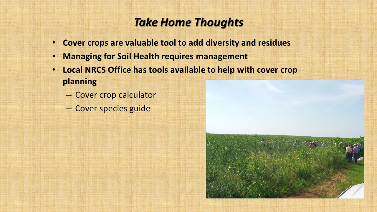 Take Home Thoughts Cover crops are valuable tool to add diversity and residues Managing for Soil Health requires management Local NRCS Office has tool