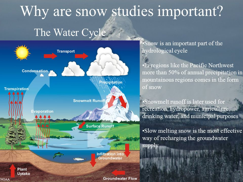 Why are snow studies important? Snow is an important part of the hydrological cycle In regions like the Pacific Northwest more than 50% of annual prec