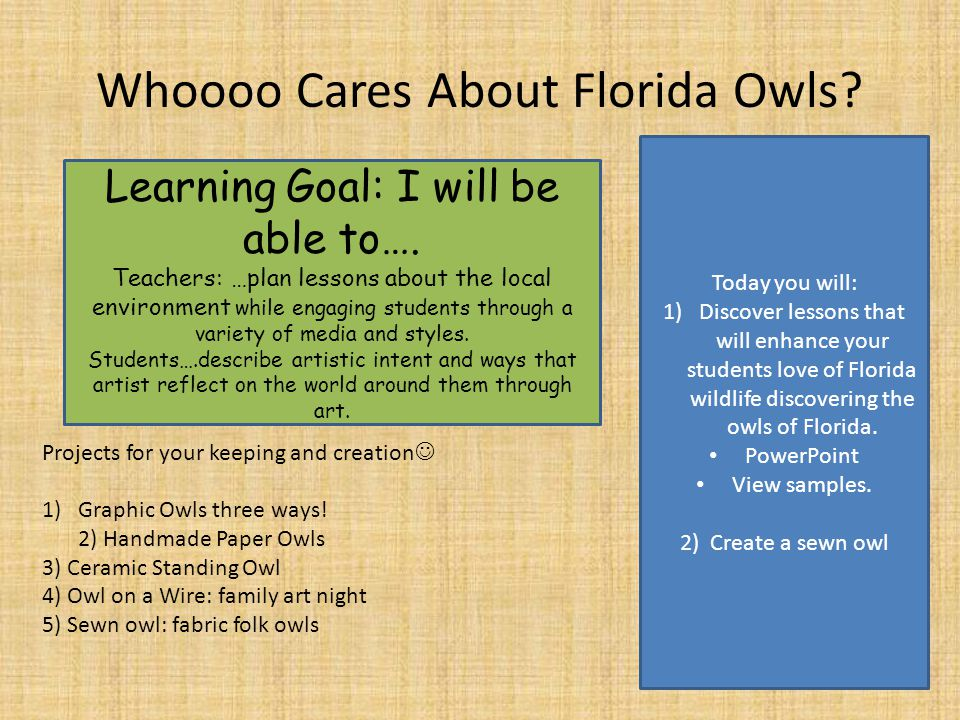 Whoooo Cares About Florida Owls. Learning Goal: I will be able to….