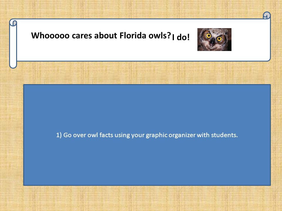 Whooooo cares about Florida owls. I do.