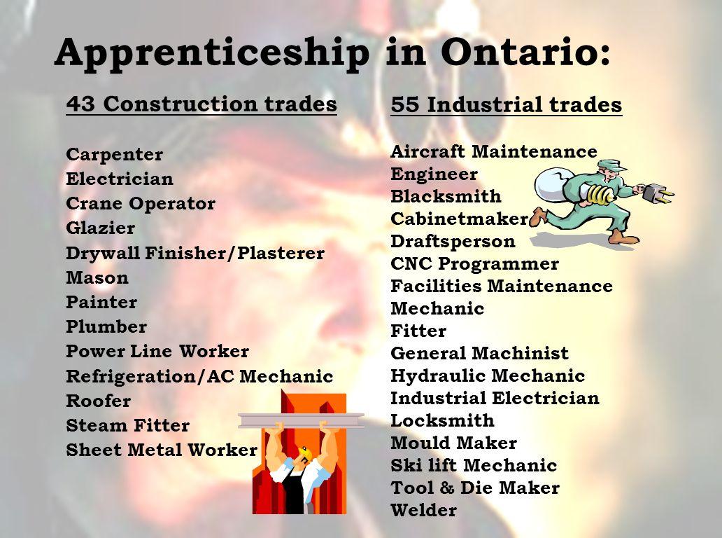 Apprenticeship in Ontario: 43 Construction trades Carpenter Electrician Crane Operator Glazier Drywall Finisher/Plasterer Mason Painter Plumber Power