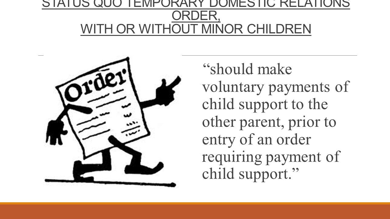 """STATUS QUO TEMPORARY DOMESTIC RELATIONS ORDER, WITH OR WITHOUT MINOR CHILDREN """"should make voluntary payments of child support to the other parent, pr"""