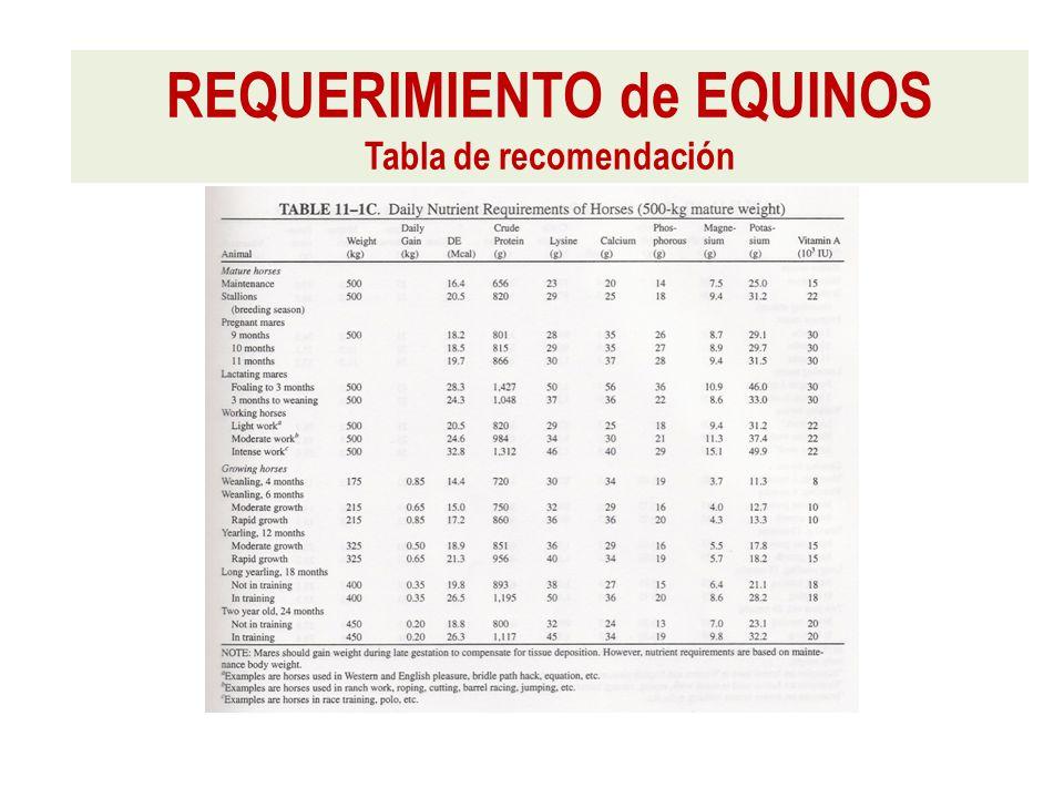 REQUERIMIENTO de EQUINOS Tabla de recomendación