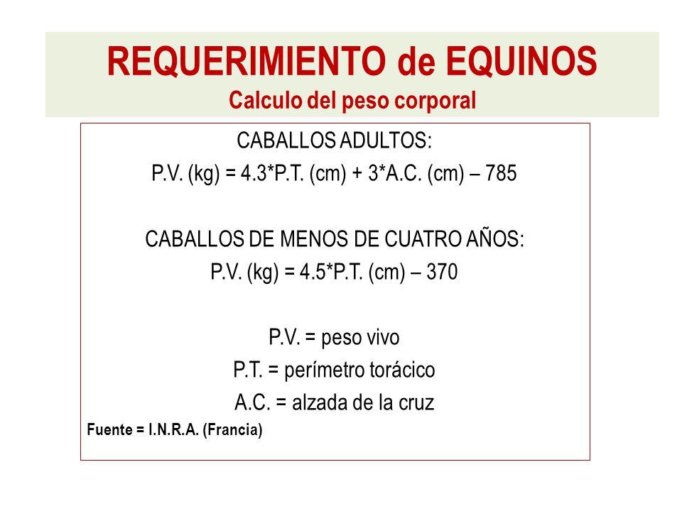 CABALLOS ADULTOS: P.V. (kg) = 4.3*P.T. (cm) + 3*A.C.