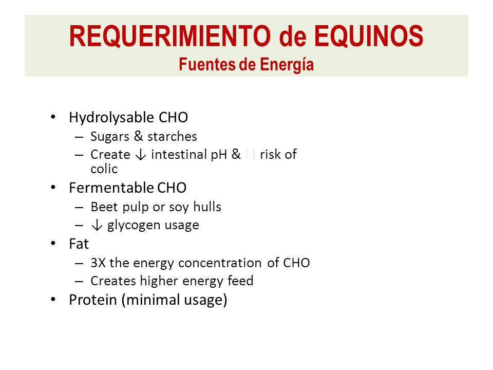 Hydrolysable CHO – Sugars & starches – Create ↓ intestinal pH &  risk of colic Fermentable CHO – Beet pulp or soy hulls – ↓ glycogen usage Fat – 3X the energy concentration of CHO – Creates higher energy feed Protein (minimal usage) REQUERIMIENTO de EQUINOS Fuentes de Energía