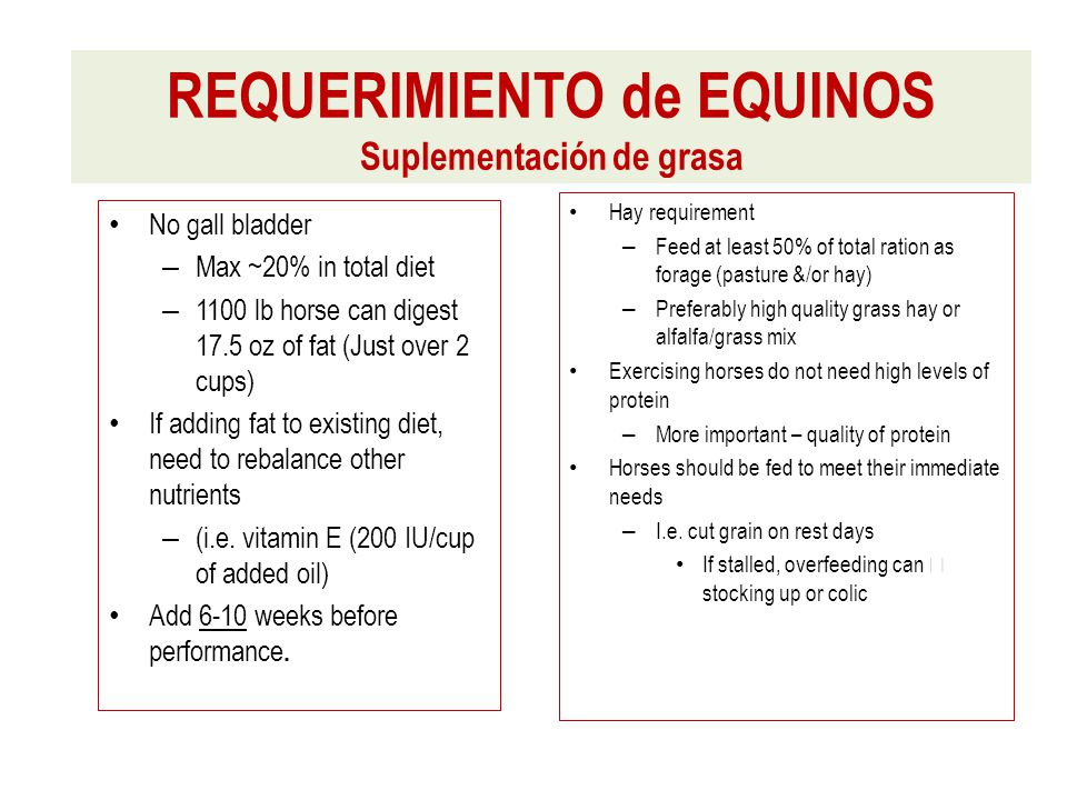 No gall bladder – Max ~20% in total diet – 1100 lb horse can digest 17.5 oz of fat (Just over 2 cups) If adding fat to existing diet, need to rebalance other nutrients – (i.e.