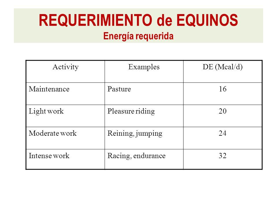 ActivityExamplesDE (Mcal/d) MaintenancePasture16 Light workPleasure riding20 Moderate workReining, jumping24 Intense workRacing, endurance32 REQUERIMIENTO de EQUINOS Energía requerida