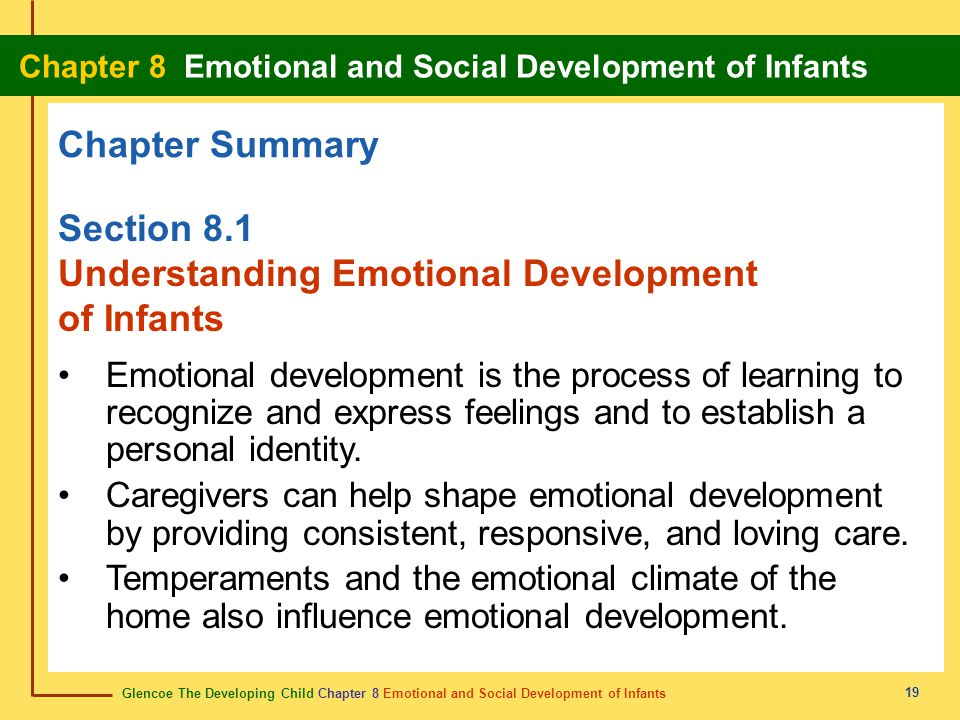 Glencoe The Developing Child Chapter 8 Emotional and Social Development of Infants Chapter 8 Emotional and Social Development of Infants 19 Chapter Su