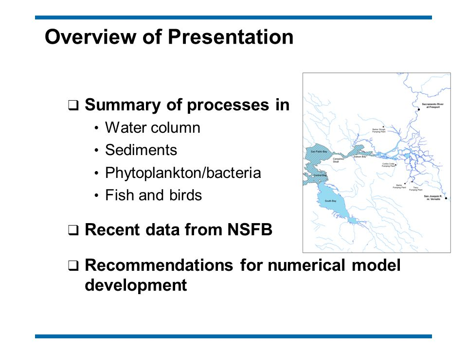 Overview of Presentation q Summary of processes in Water column Sediments Phytoplankton/bacteria Fish and birds q Recent data from NSFB q Recommendati