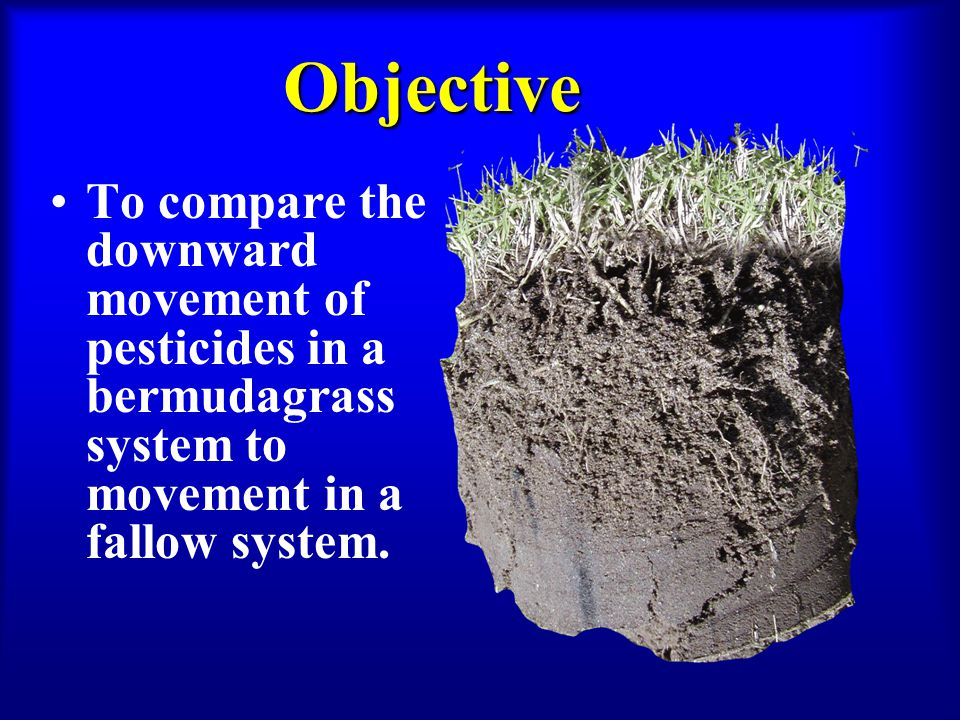 Objective To compare the downward movement of pesticides in a bermudagrass system to movement in a fallow system.