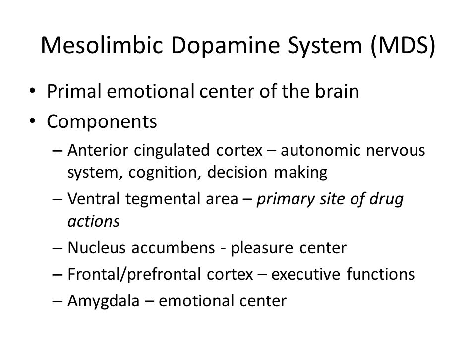 Mesolimbic Dopamine System (MDS) Primal emotional center of the brain Components – Anterior cingulated cortex – autonomic nervous system, cognition, d
