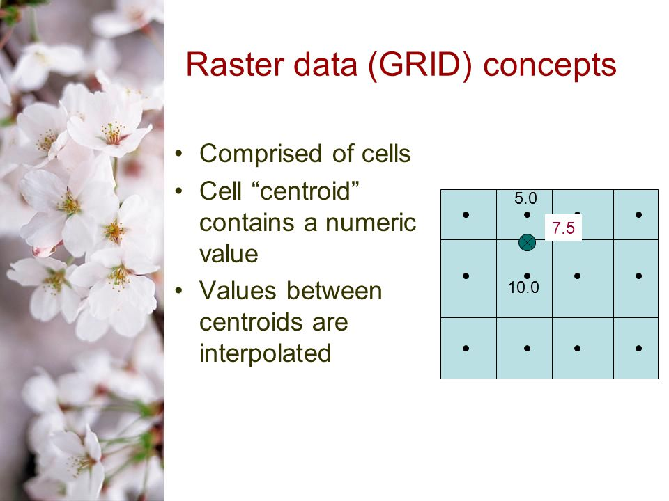 Raster data (GRID) concepts Comprised of cells Cell centroid contains a numeric value Values between centroids are interpolated 5.0 10.0 7.5