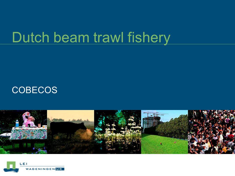 Dutch beam trawl fishery COBECOS