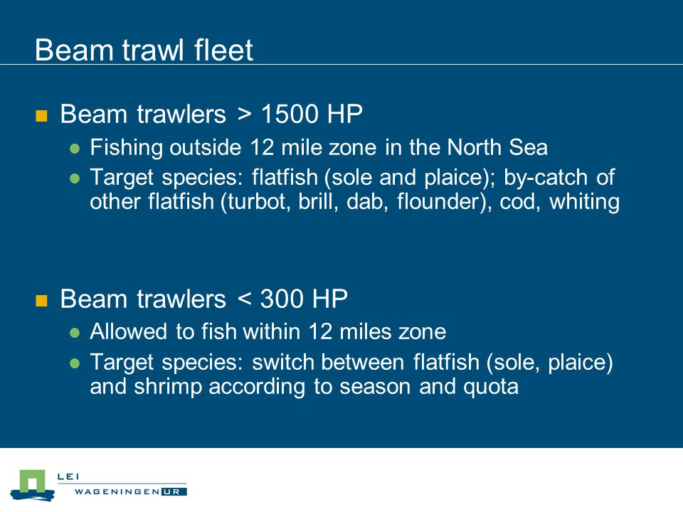Beam trawl fleet Beam trawlers > 1500 HP Fishing outside 12 mile zone in the North Sea Target species: flatfish (sole and plaice); by-catch of other f