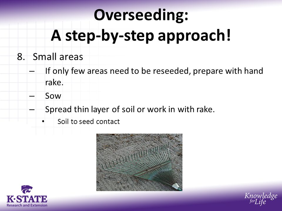 Overseeding: A step-by-step approach! 8.Small areas – If only few areas need to be reseeded, prepare with hand rake. – Sow – Spread thin layer of soil