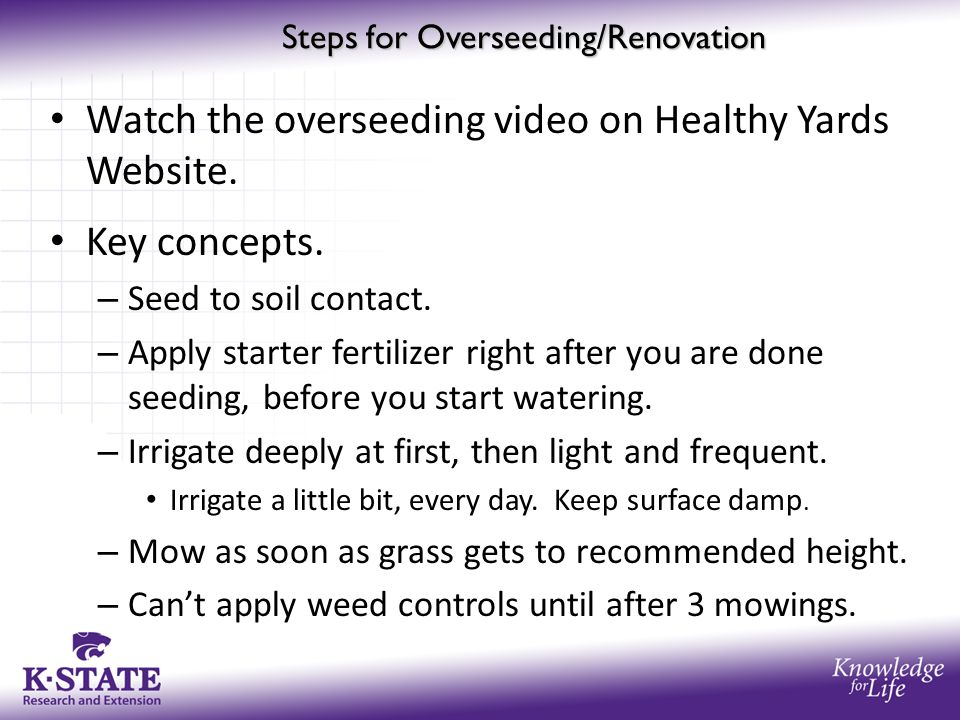 Steps for Overseeding/Renovation Watch the overseeding video on Healthy Yards Website. Key concepts. – Seed to soil contact. – Apply starter fertilize