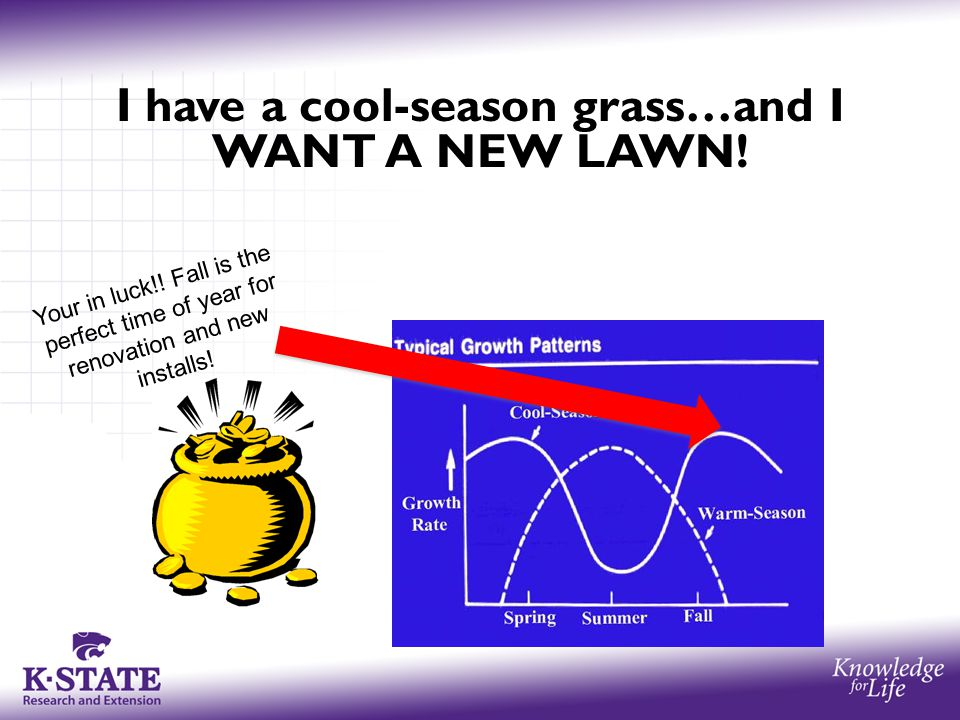 I have a cool-season grass…and I WANT A NEW LAWN! Your in luck!! Fall is the perfect time of year for renovation and new installs!