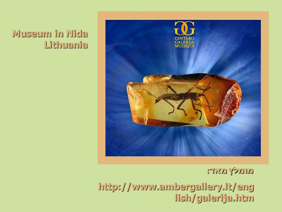 מומלץ מאד: http://www.ambergallery.lt/eng lish/galerija.htm Museum in Nida Lithuania