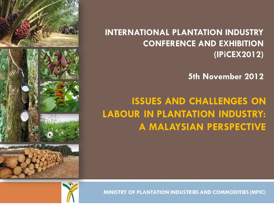 ISSUES AND CHALLENGES ON LABOUR IN PLANTATION INDUSTRY: A MALAYSIAN PERSPECTIVE MINISTRY OF PLANTATION INDUSTRIES AND COMMODITIES (MPIC) INTERNATIONAL PLANTATION INDUSTRY CONFERENCE AND EXHIBITION (IPiCEX2012) 5th November 2012