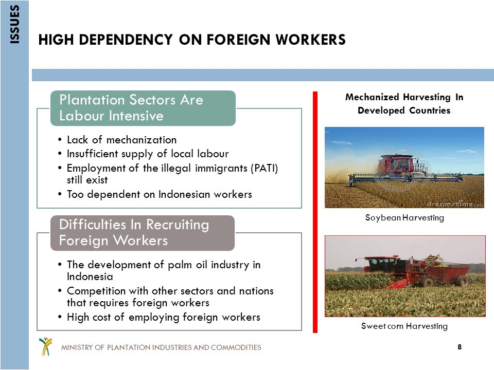 HIGH DEPENDENCY ON FOREIGN WORKERS Lack of mechanization Insufficient supply of local labour Employment of the illegal immigrants (PATI) still exist Too dependent on Indonesian workers Plantation Sectors Are Labour Intensive The development of palm oil industry in Indonesia Competition with other sectors and nations that requires foreign workers High cost of employing foreign workers Difficulties In Recruiting Foreign Workers ISSUES 8 MINISTRY OF PLANTATION INDUSTRIES AND COMMODITIES Mechanized Harvesting In Developed Countries Soybean Harvesting Sweet corn Harvesting