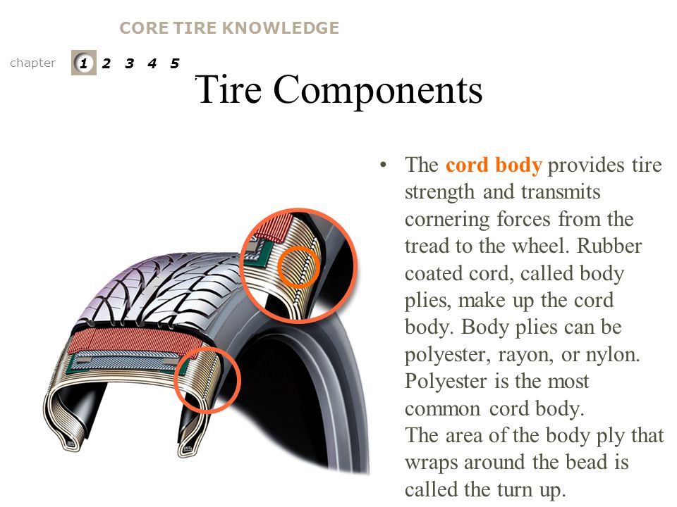 Tire Components The bead filler is a hard rubber compound used to provide stability to the lower sidewall and bead area. Bead Filler chapter 1 2 3 4 5
