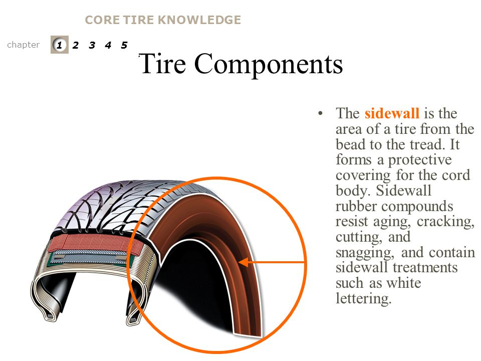 Tire Components The cord body provides tire strength and transmits cornering forces from the tread to the wheel. Rubber coated cord, called body plies