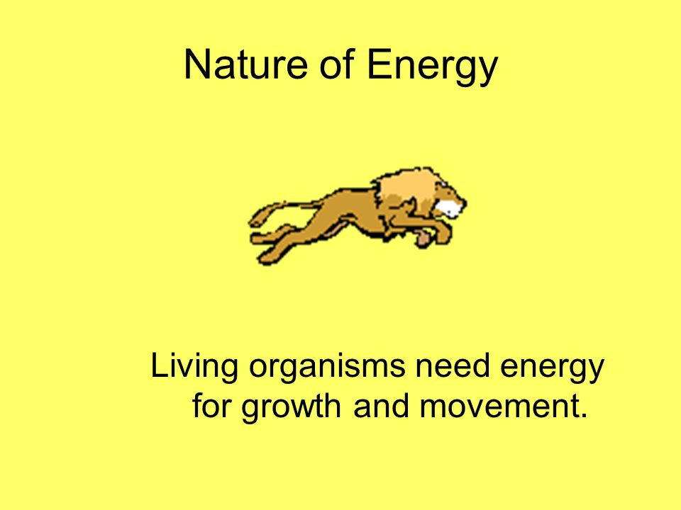 Nature of Energy What is energy that it can be involved in so many different activities?