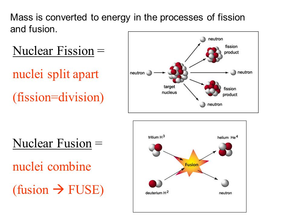 Nuclear Fission = nuclei split apart (fission=division) Nuclear Fusion = nuclei combine (fusion  FUSE) Mass is converted to energy in the processes o