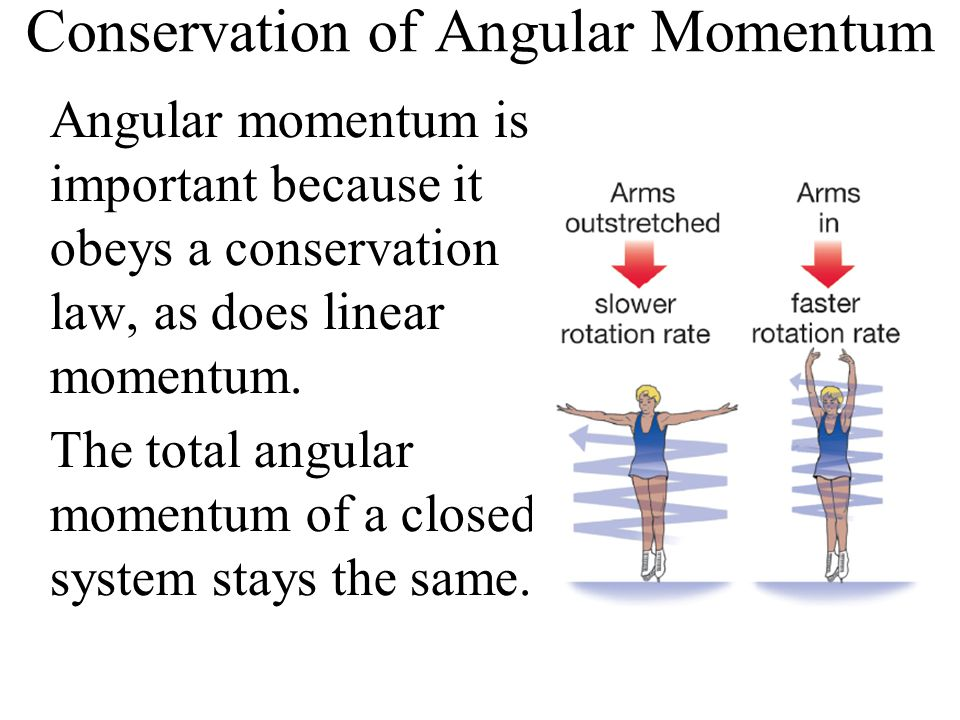 Conservation of Angular Momentum Angular momentum is important because it obeys a conservation law, as does linear momentum. The total angular momentu